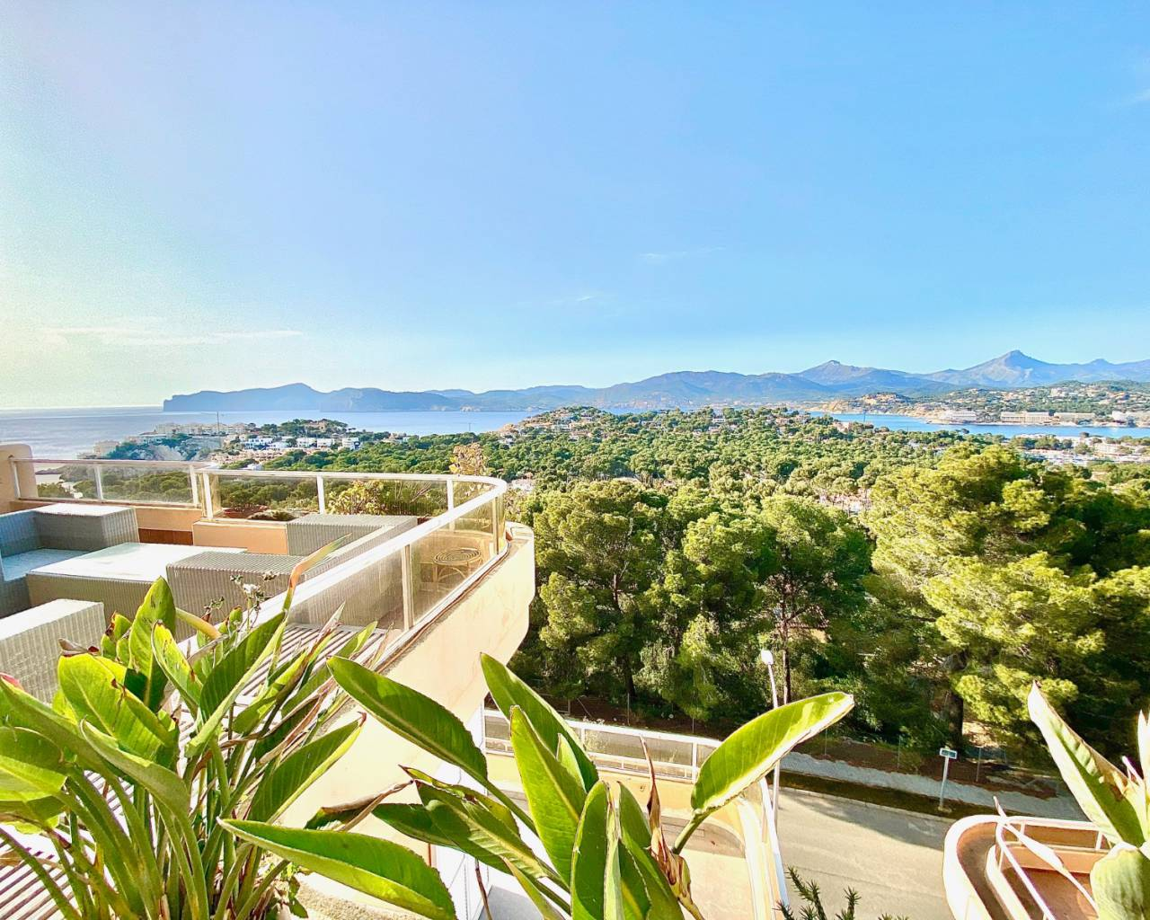 Apartment - For sale - Nova Santa Ponsa - Nova Santa Ponsa